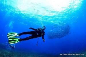 ถ่ายภาพใต้น้ำสวยๆ